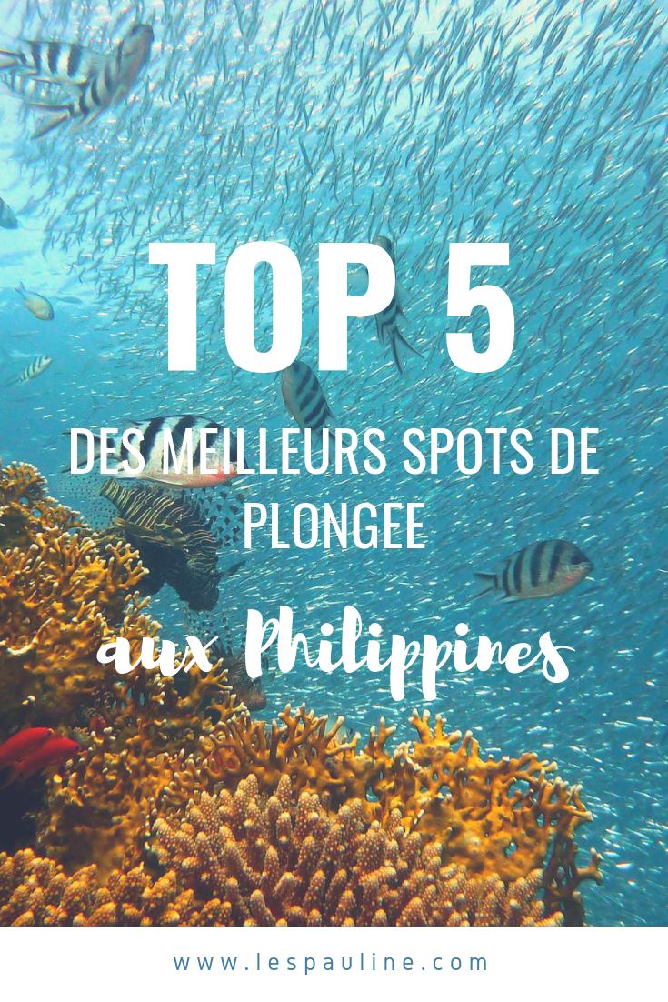 5 Spots De Plongee Aux Philippines Les Pauline